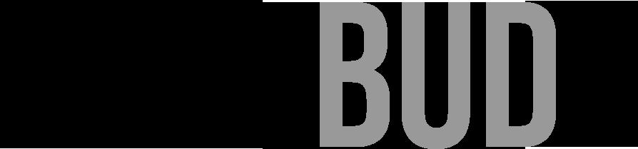 Logo Rosebud2 agenzia fotogiornalistica - Photo Agency